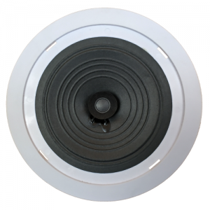 Leco Audio Cheapest commercial ceiling speaker
