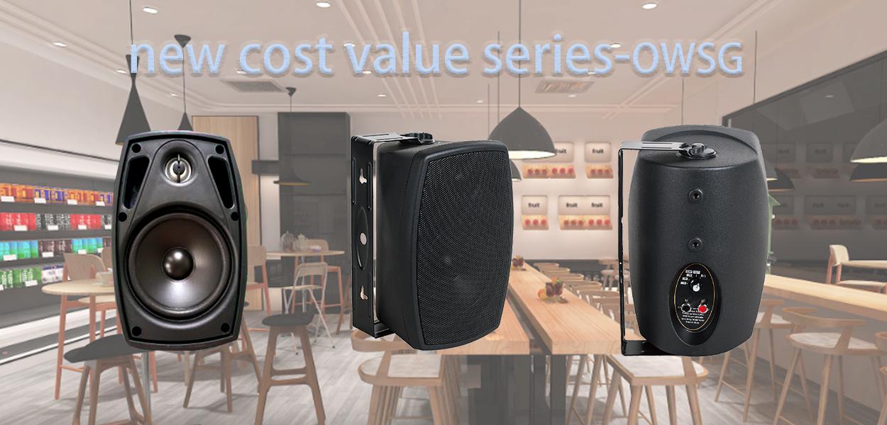 wall speaker owsg